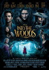 Into the Woods Best Costume Design Oscar Nomination
