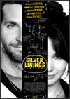 Silver Linings Playbook Best Adapted Screenplay Oscar Nomination
